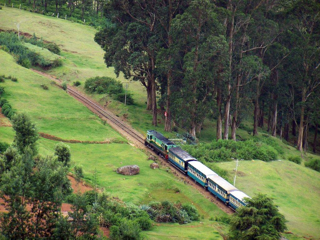 Coonoor kerala train